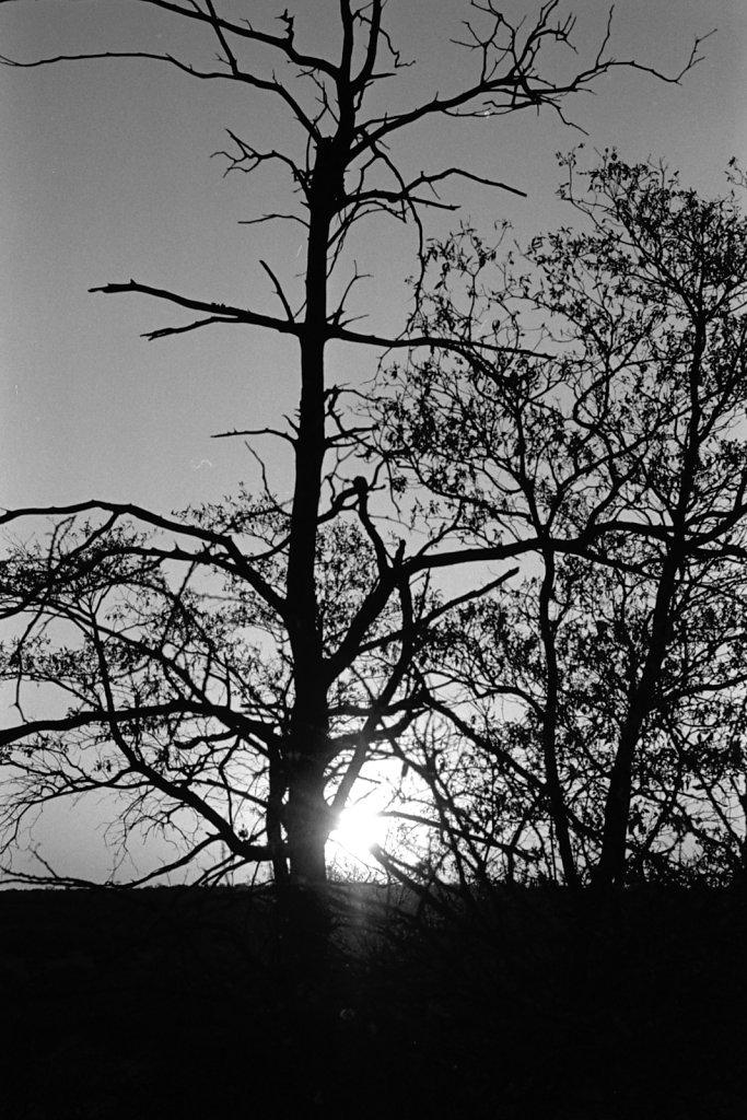 Sundown. Leonardville.